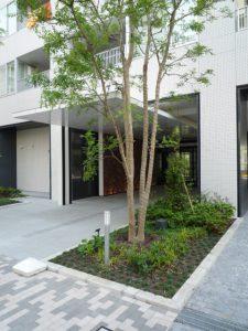 パークタワー錦糸町3